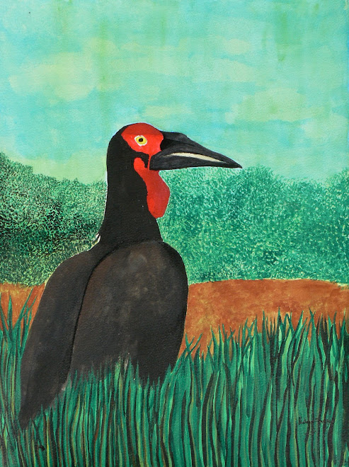 Le Hututu - the Ground Hornbill