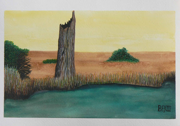 Bush Scene with Tree Stump