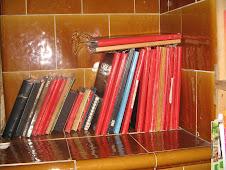 Tagebücher/ Diarys