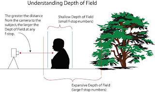 Graphic of Depth of Field