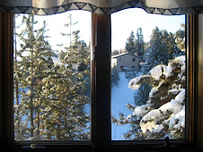 The view outside my kitchen window...