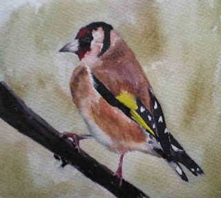Goldfinch, watercolour, March 08