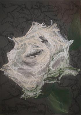 ivory rose #2
