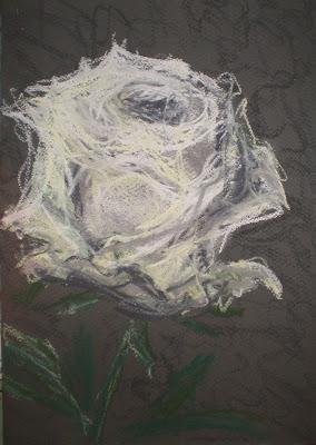 ivory rose #1