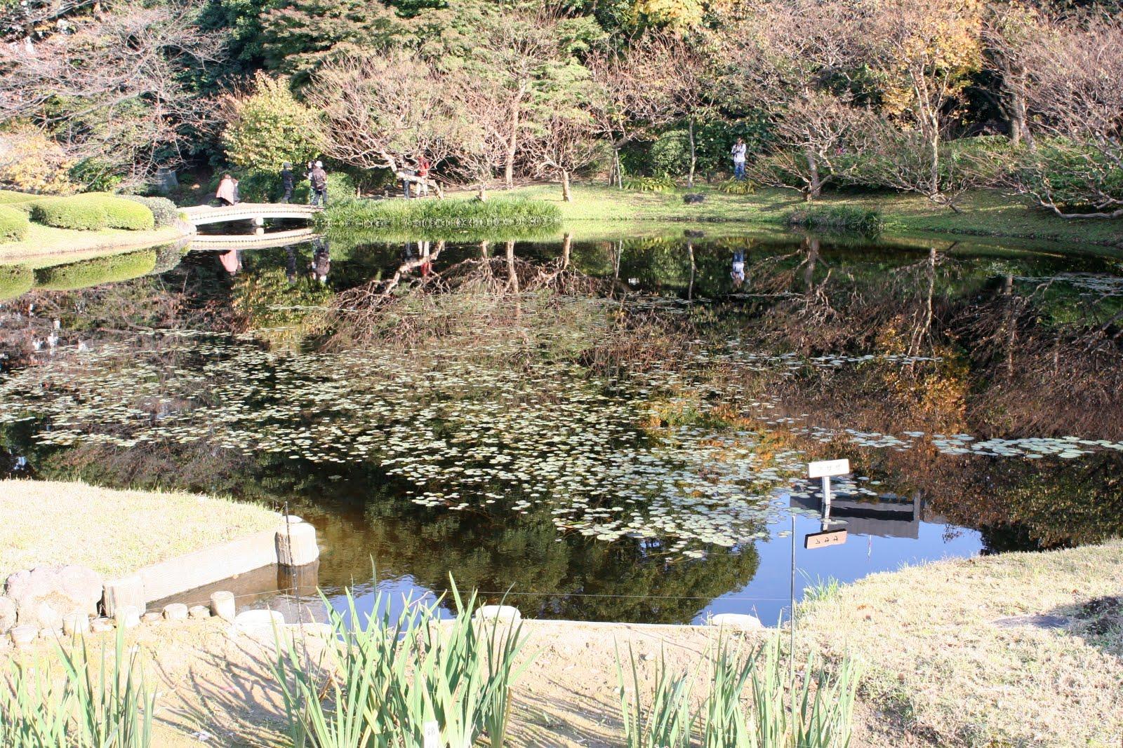 Manue tokyo jardin imp rial for Jardin imperial