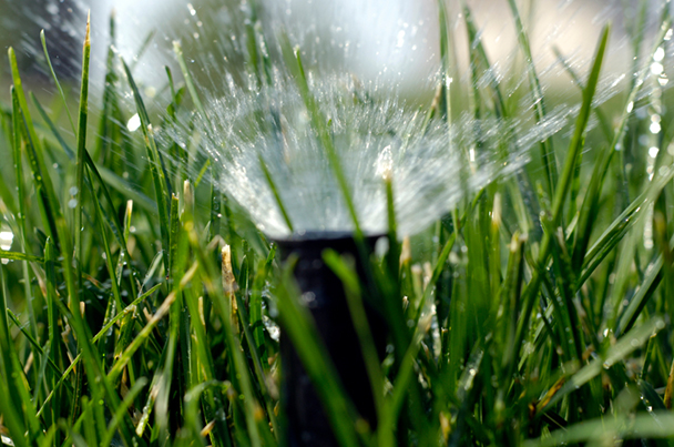 how to choose the right sprinkler head
