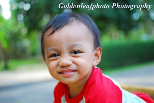 Goldenleafphoto