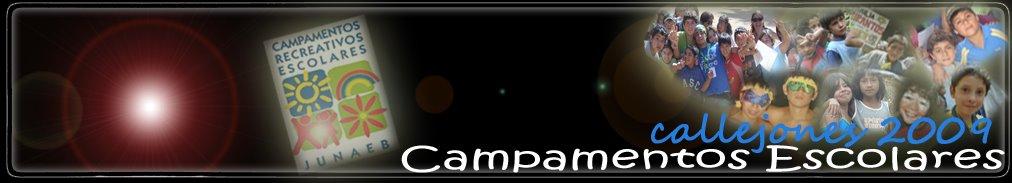 CAMPAMENTOS ESCOLARES CALLEJONES 2008
