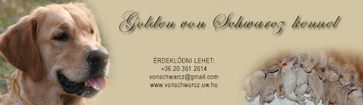 Golden von Schwarcz kennel
