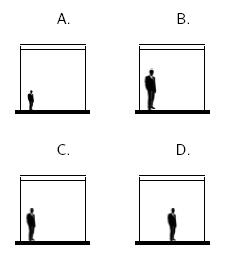 Opciones de respuesta Ejercicio Perspectiva Posicion Dimensiones Relativo