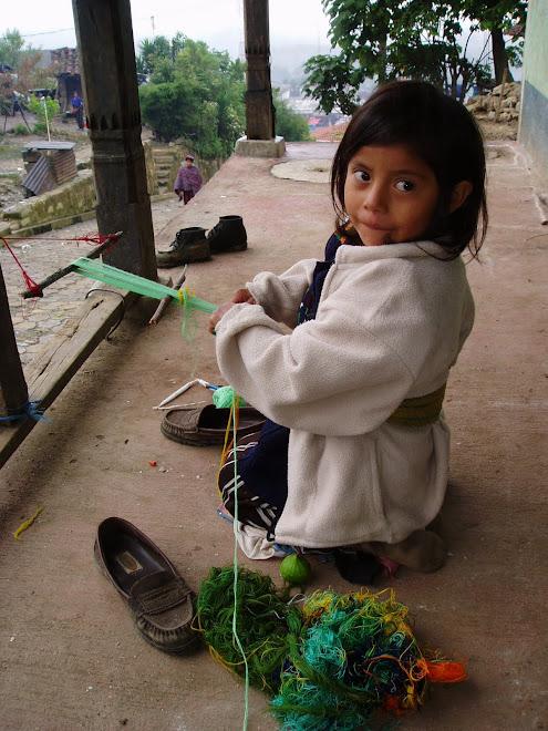 Ung veverske fra Chajul.