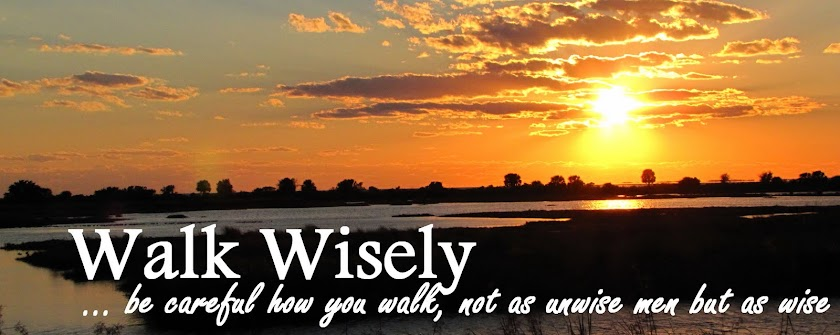 Walk Wisely