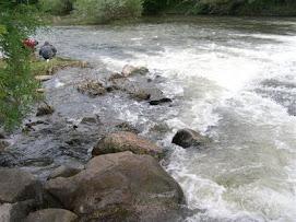 El río Tera a su paso por Garray