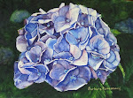 Blue Hydrangea Original Watercolor