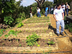 Campo Agroecologia SeteEcos em Sete Lagoas/MG
