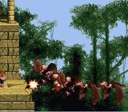 Donkey Kong Country Bonus Room 25