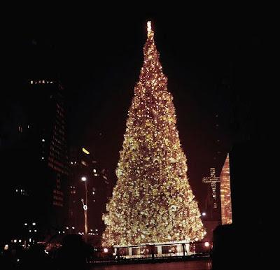 Outdoor christmas lights and christmas trees 29Pics
