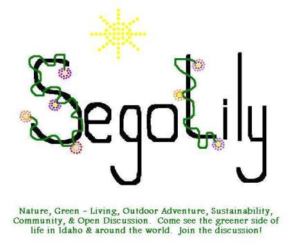 SegoLily