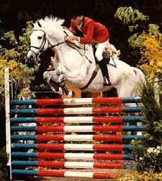 Abdullah horse02