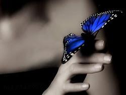 volando como una mariposa