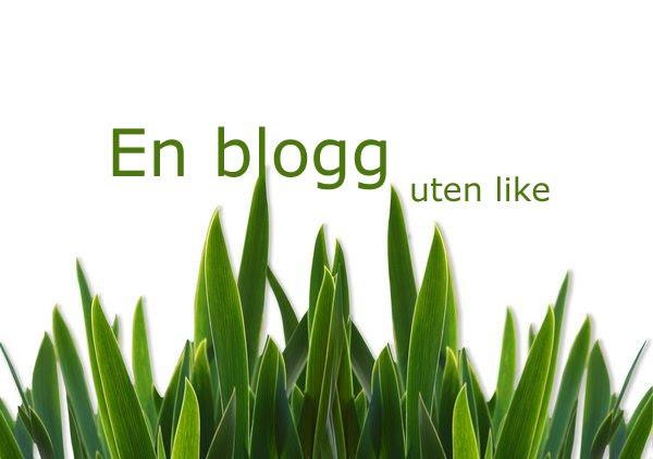 En blogg