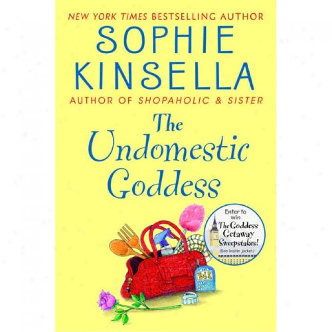 Review carnival september 2010 sophie kinsella the undomestic goddess stopboris