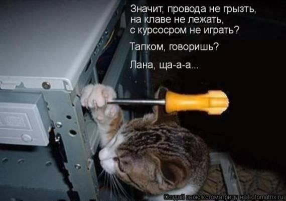 Прикола.нет юмористический журнал - рисунок-ржака.