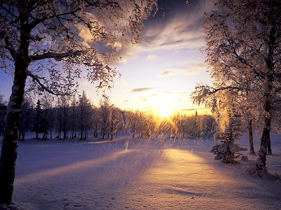 Zimski ugođaj :) - Page 2 Falling-Snow-Winter-wallp
