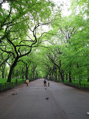 central park. Nearing Central Park South,