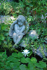 GARDEN POND