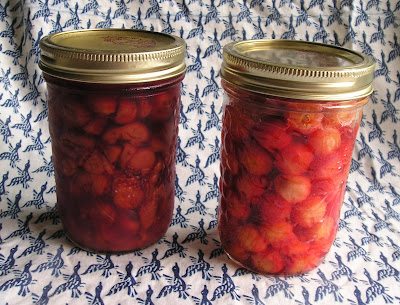 A Jar of Cherries From This Year and Last Year