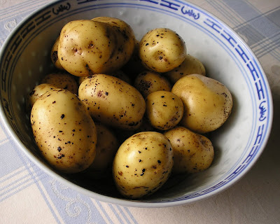 Bintje Potatoes