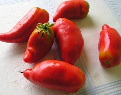 Amish Paste Tomatoes