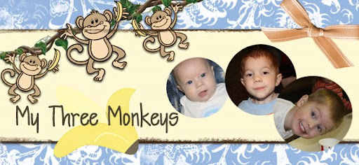 My Three Monkeys