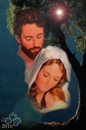 Matrimonio Perfecto : La hoja del arce el matrimonio perfecto
