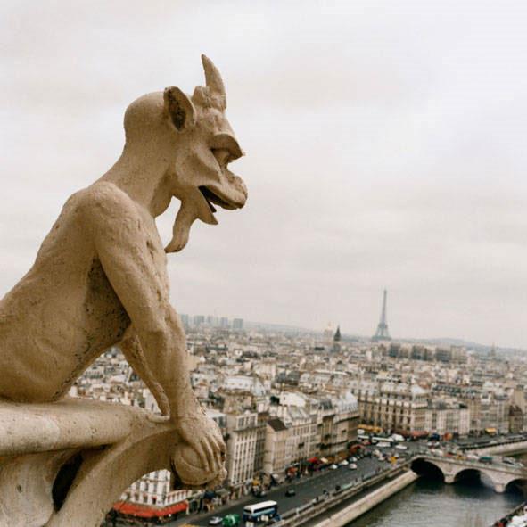 Notre Dame Cathedral Gargoyles Appreciating Art: Garg...