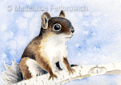 watercolour squirrel painting