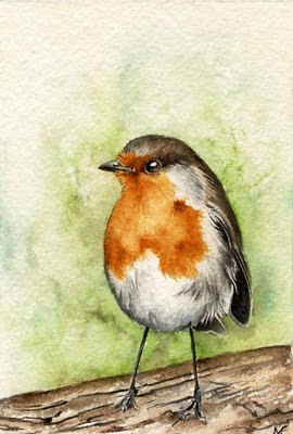watercolour robin painting