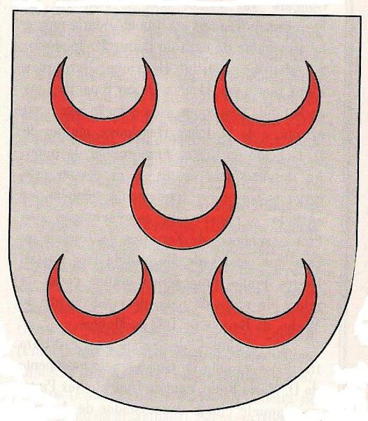 Escudo com as armas dos Pinto