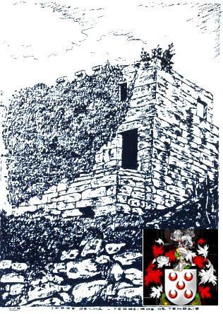 Torre da Chã, solar da família Pinto