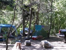 campsite grows by tent and canopies,(c)2008 Sharon Falsetto