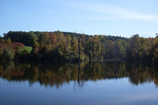 pond beside Crescent Trail, Town of Perinton NY