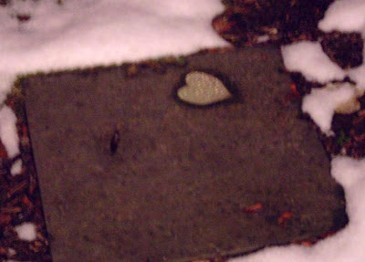 nature plants a glistening heart on a sidewalk