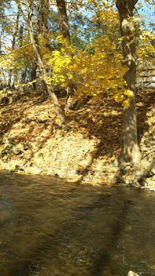 low water levels in the fall