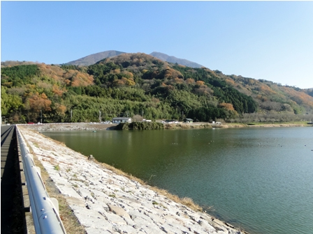 Italyanello in giappone laghetto artificiale for Depuratore laghetto