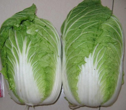 Chinese Cabbage Benefits