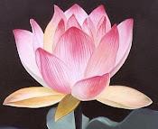 Esse Blog Trata de assuntos de Terapias Alternativas, Estética, Feng Shui, Esoterismo.