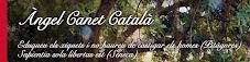 Àngel Canet i Català