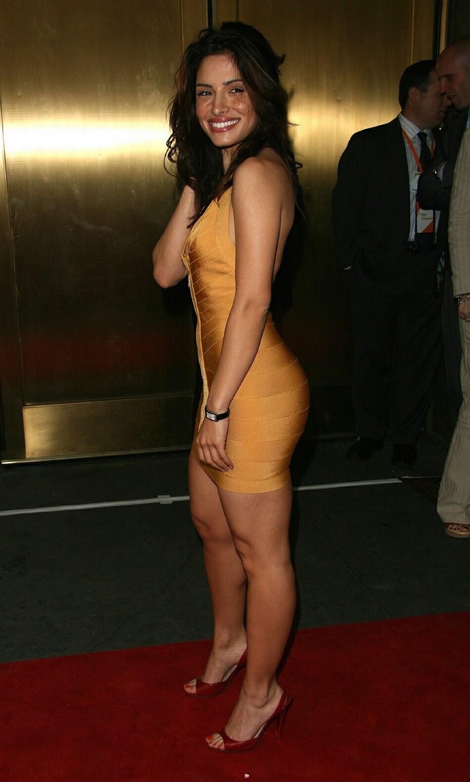 Sarah Shahi Hot Nude And Very Teasing Topless Twitter
