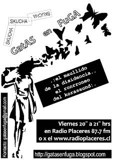 Gatas en fuga on-line en w3.radioplaceres.cl